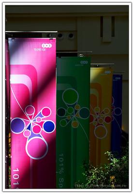 陽光灑在 TAIPEI 101 的廣告布縵上